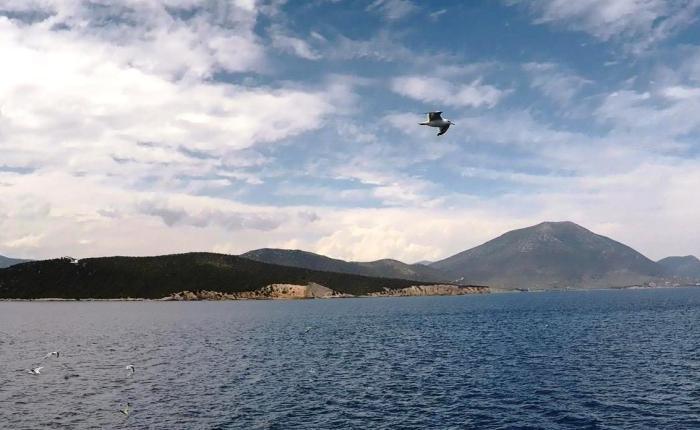 Pribegii prin Evia (3) – LoutraEdipsos